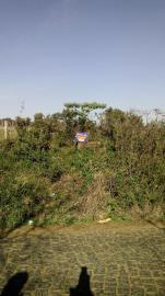 TerrenoVenda em Cachoeira Do Sul no bairro Maua