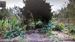 TerrenoVenda em São Leopoldo no bairro Feitoria