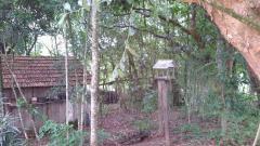 FazendaVenda em Portão no bairro Rincão do Cascalho